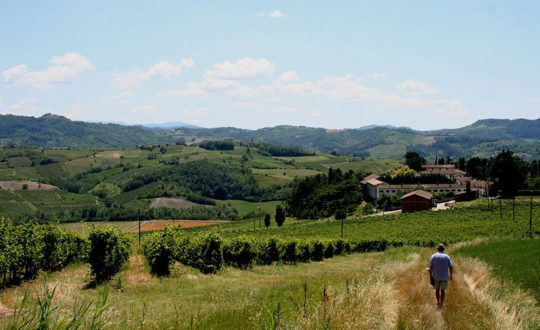 Klimaat in Le Marche
