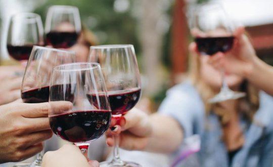 De lekkerste wijnen uit Le Marche!